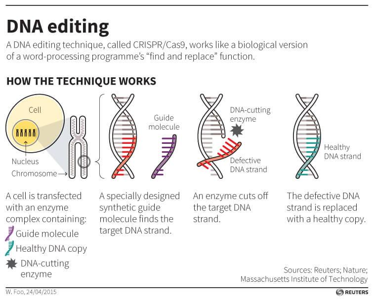 EditingDNA