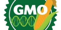 GMO labeling bill defeated in Canadian parliament wrbm large