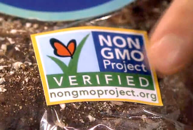 non gmo project butterfly 32832