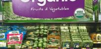 organic food 4322877