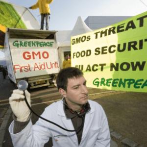 Greenpeace GMO 43277