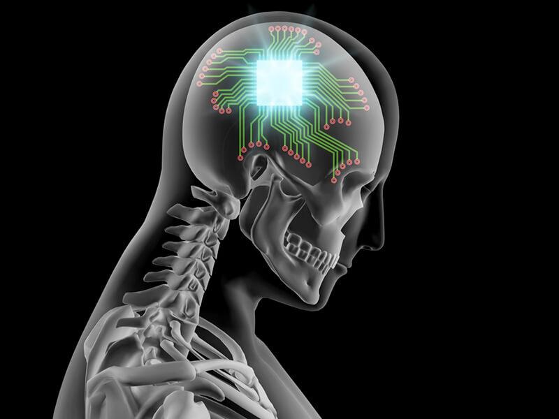 brain 4 6 18 2.png