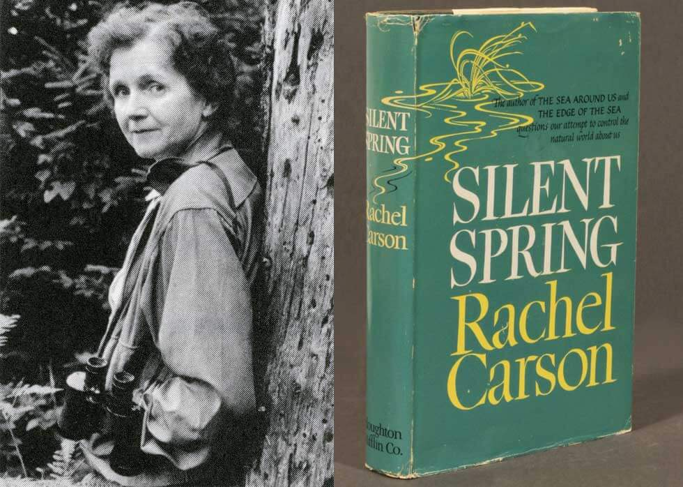 Image result for PHOTOS OF RACHEL CARSON SILENT SPRING
