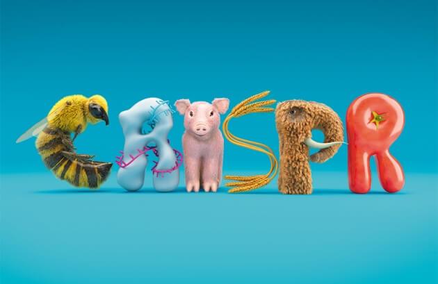 CRISPR animals 432773