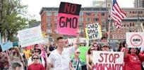 GMO protest 323898