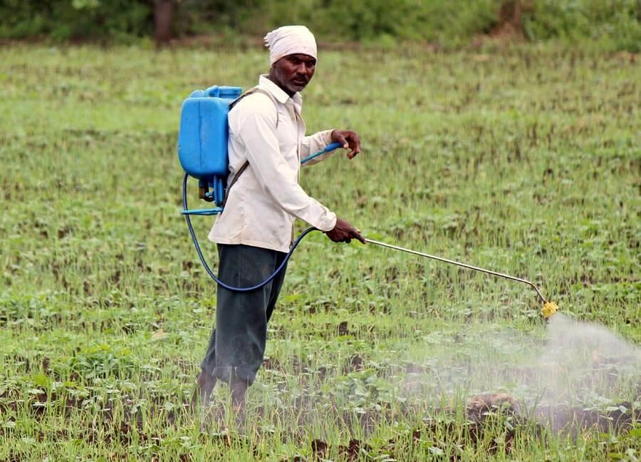 pesticide spraying man