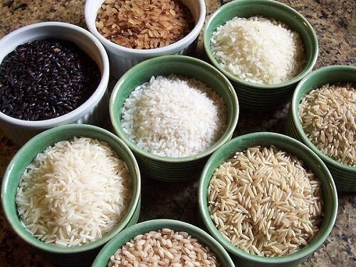 rice genetics 32372