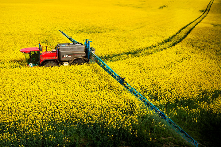 UK National Farmers Union: Neonicotinoid ban could compromise crop protection