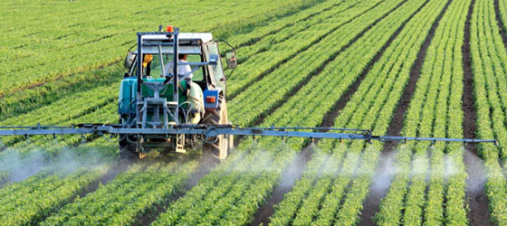 Neonicotinoid insecticide 3277487