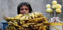 ghana fruit seller banana joe klamar afp getty images horizontal large gallery