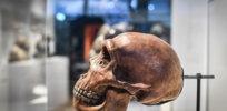 5-16-2018 Neanderthal-958572