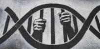 5-25-2018 criminal+DNA