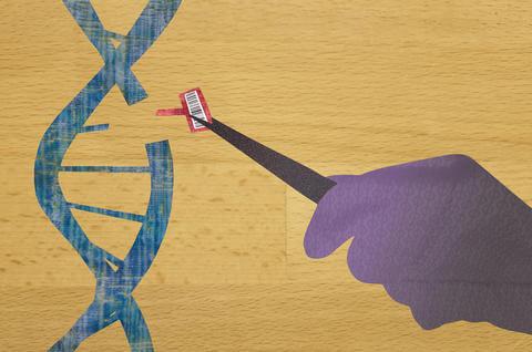 mml dna barcode illustration horizontal mb