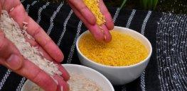 px Golden Rice