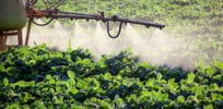 10 tips for better communication about pesticide science, risks