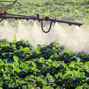 Herbicide Plant Spray Crops Poison