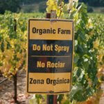 Do organic farmers really use more pesticides than conventional farmers? Not even close.