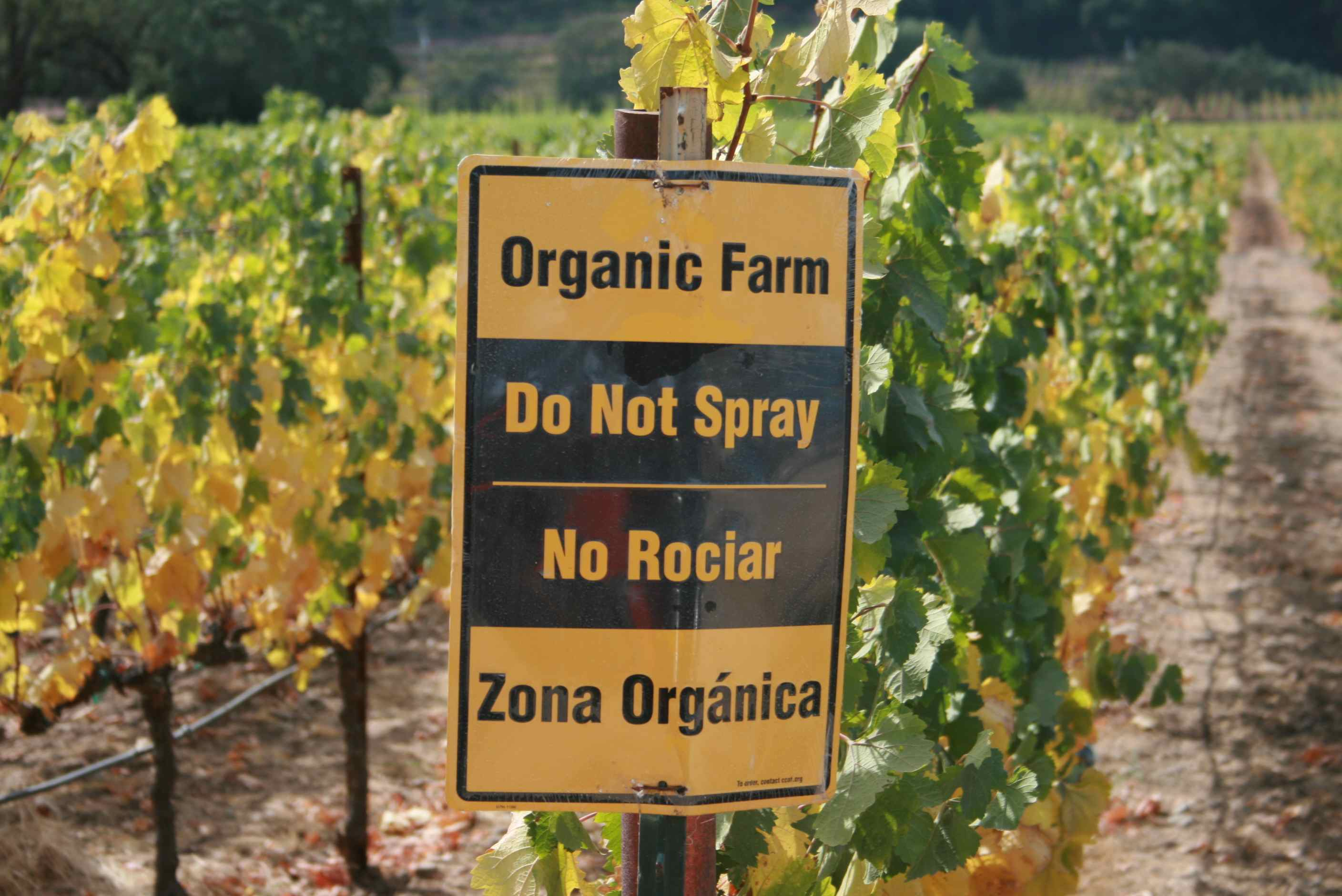 The Basic Principles Of Organic Pesticides: Not An Oxymoron