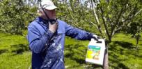 organic pesticides 323277
