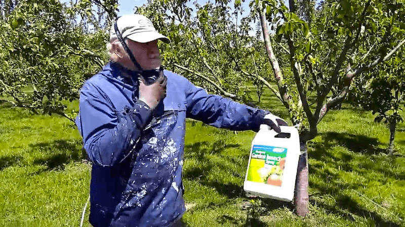 A Behind The Scenes Look At Pesticide Use In Organic Orchards
