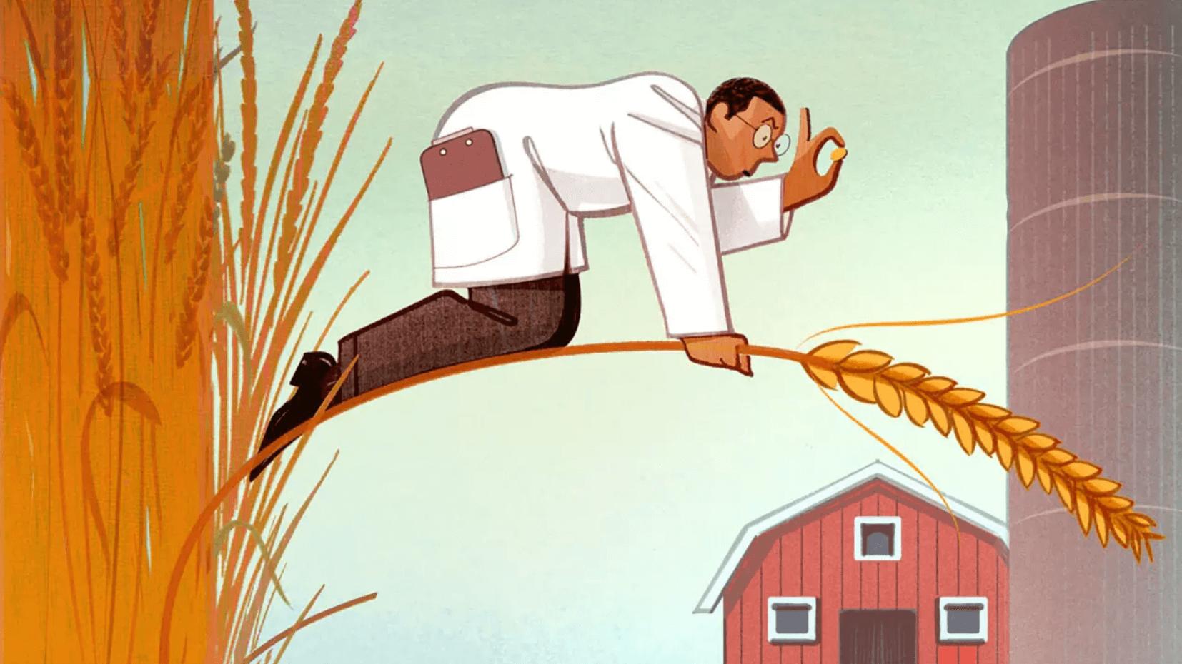 CRISPR gene edit crops 3277