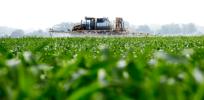 GMO pesticides 32832