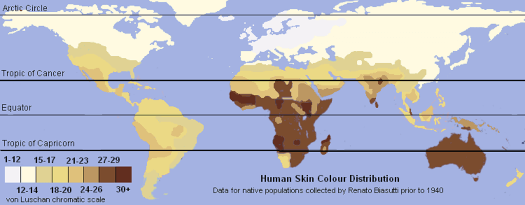 Unlabeled Renatto Luschan Skin color map