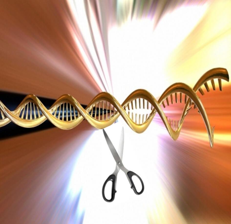 gene editing 5 15 18