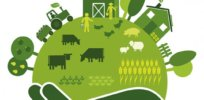 Sustainable food farming 323799