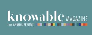 knowable logo