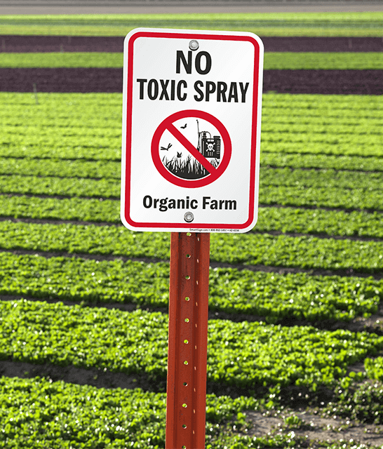 Is organic produce hazardous to your health?