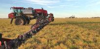 crop desiccation glyphosate 32377