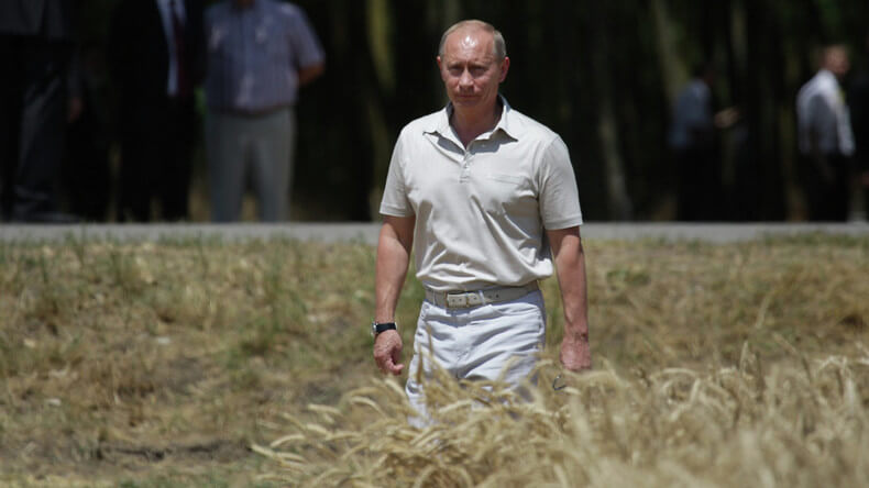 Putin organic 32737