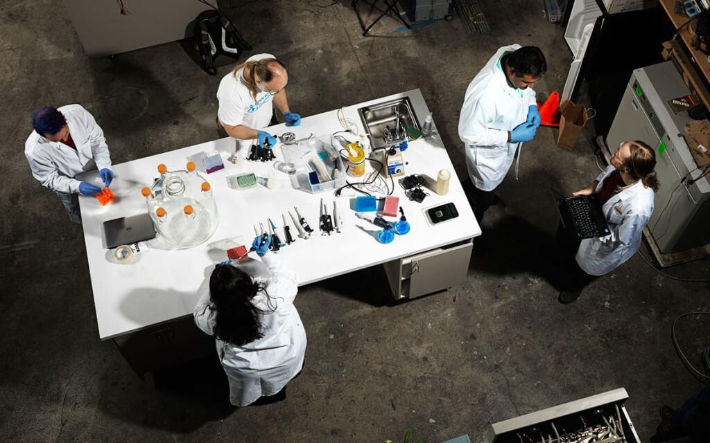 DIY biotech