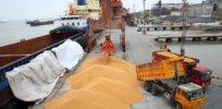 China GMO import 32277