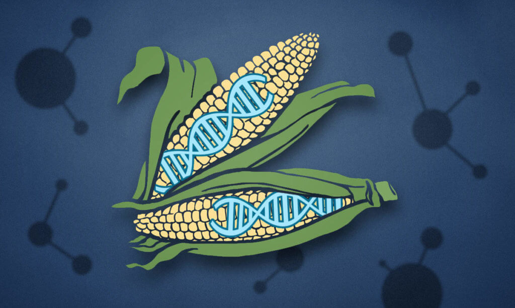 CRISPR superplants e x