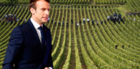 Emmanuel Macron agricultural policy french farmers agricultural fair eu brexit