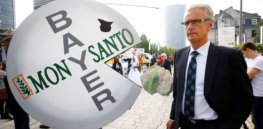 Monsanto Bayer e