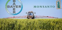 Bayer Monsanto name 32737