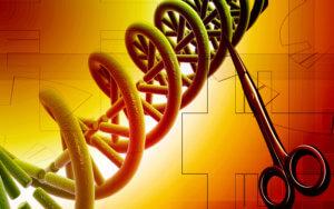 DNA 6 14 18
