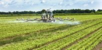 despite the attention surrounding pesticides there seems to be little at