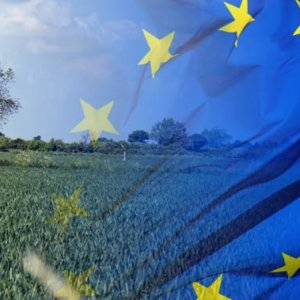 eu farming policy