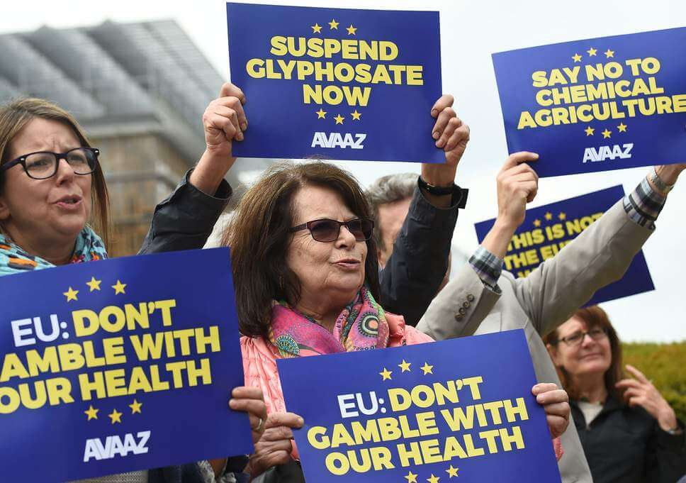 europe glyphostate protest 342737