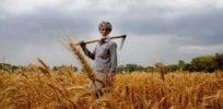 indian-farmer234