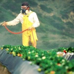 Spraying Crops 22323