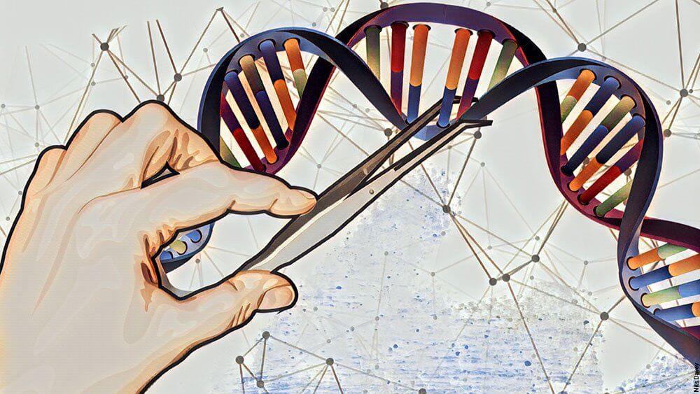 Gene editing 3338726453