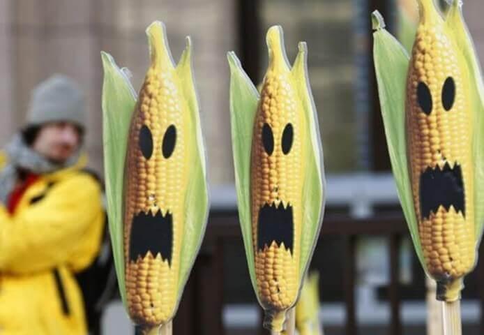 Anti GMO x minified