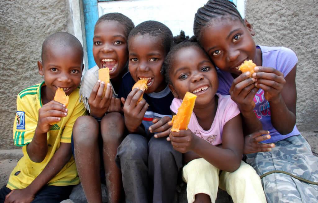 Children eating OFSP in Munguini