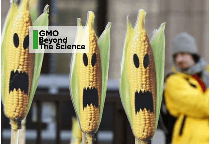 In the Battle to Regulate GMOS, Gene Editing and other New Breeding Techniques, Who Has 'Hazard Blood' on their Hands?