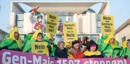 german gmo protest